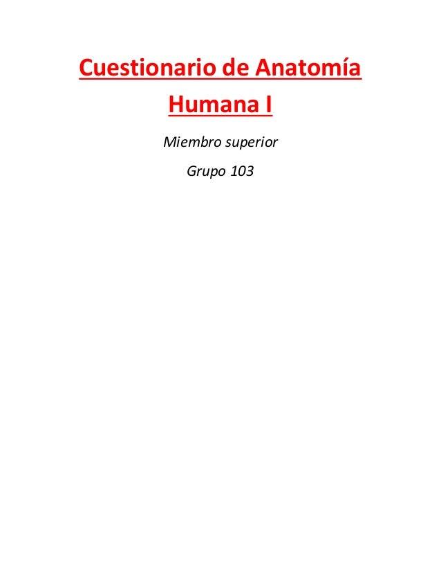 Cuestionario de anatomía humana imiembro superior