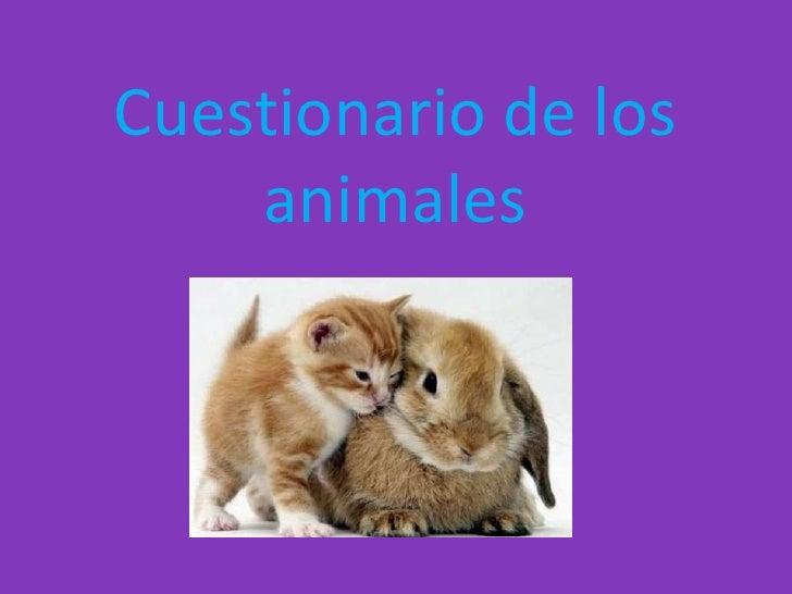Cuestionario de los    animales