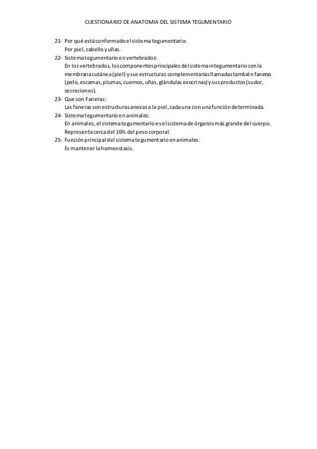 Cuestionario del sistema tegumentario