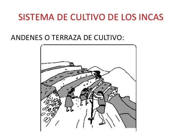 Cuestionario Incas