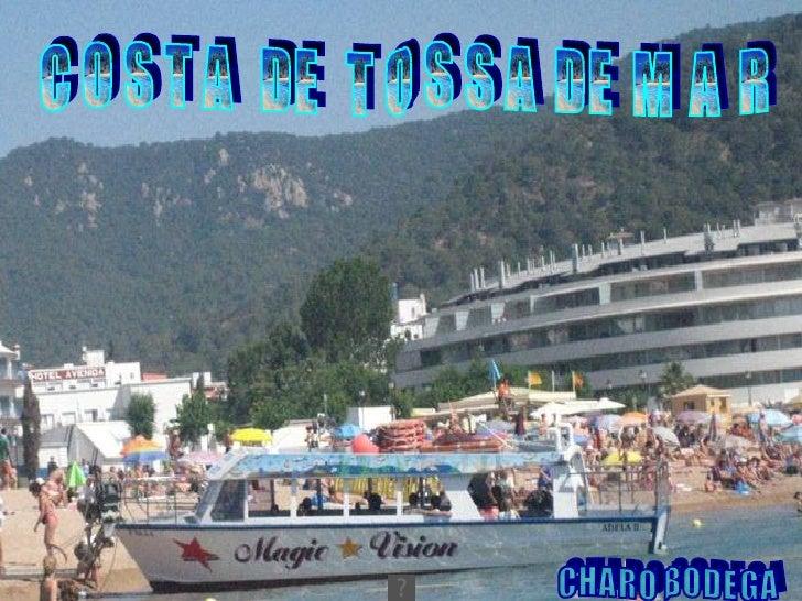 NOS ALEJAMOS DE TOSSA