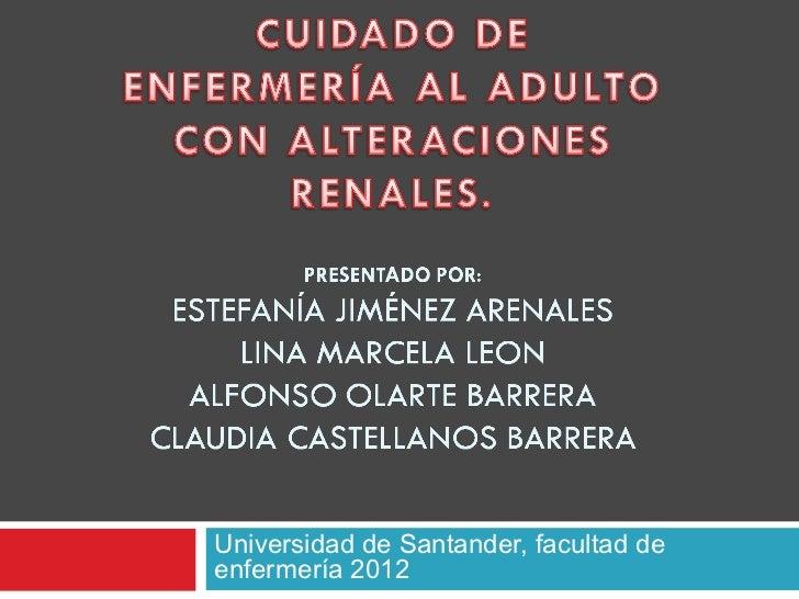 Universidad de Santander, facultad deenfermería 2012