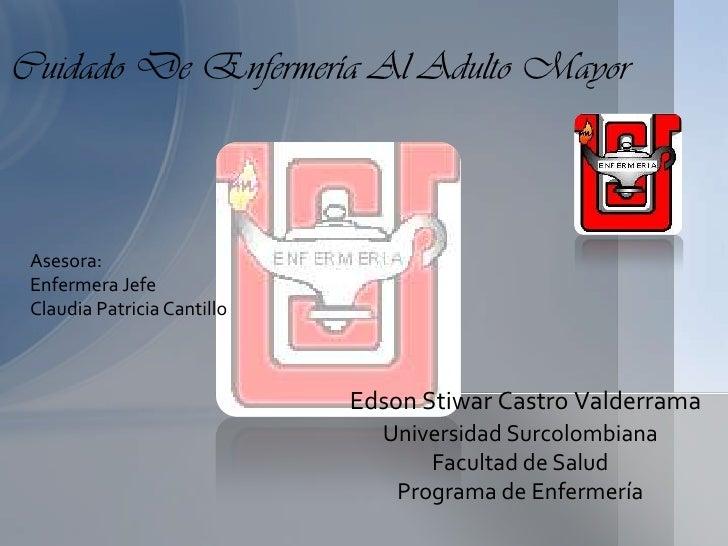 Cuidado De Enfermería Al Adulto Mayor Asesora: Enfermera Jefe Claudia Patricia Cantillo                             Edson ...