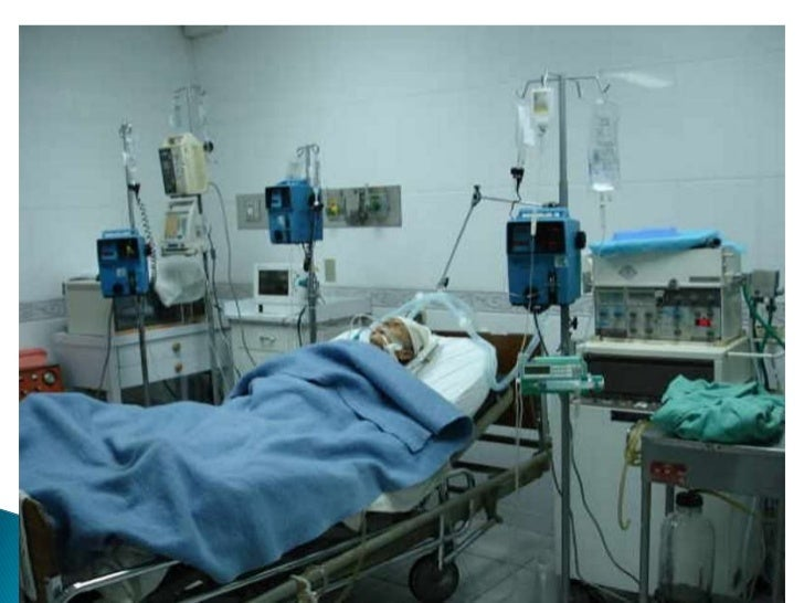 Enfermera Intensivista Pdf Download