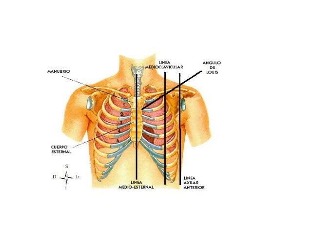 La crisis de las vértebras cervicales su tratamiento