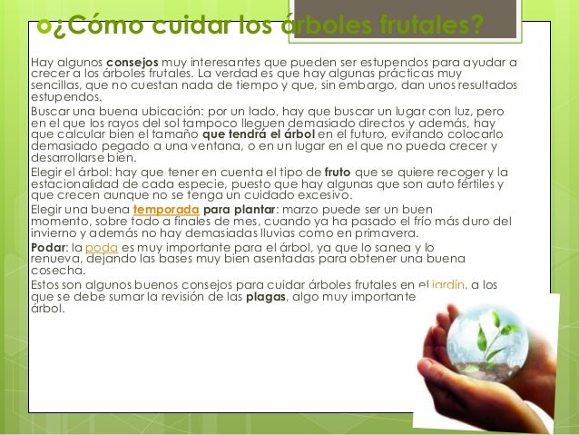 Cuidadodelosarboles 131016093036 phpapp01 - Como cuidar los arboles frutales ...