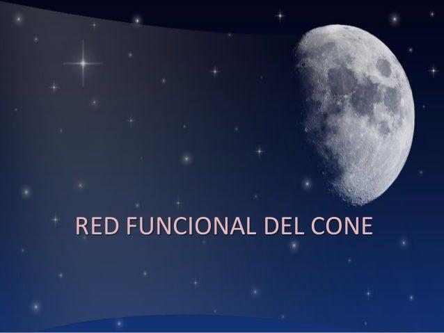 RED FUNCIONAL DEL CONE