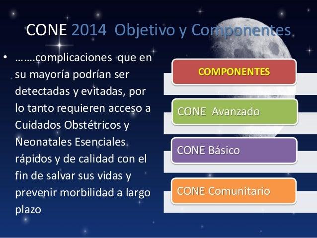 CONE 2014 Objetivo y Componentes • …….complicaciones que en su mayoría podrían ser detectadas y evitadas, por lo tanto req...