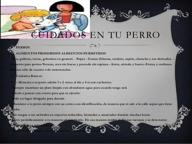 CUIDADOS EN TU PERRO  PERROS  ALIMENTOS PROHIBIDOS ALIMENTOS PERMITIDOS - Pan, galletas, tortas, golosinas en general. -...