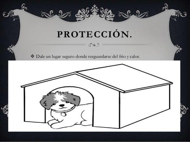 PROTECCIÓN.  Dale un lugar seguro donde resguardarse del frio y calor.