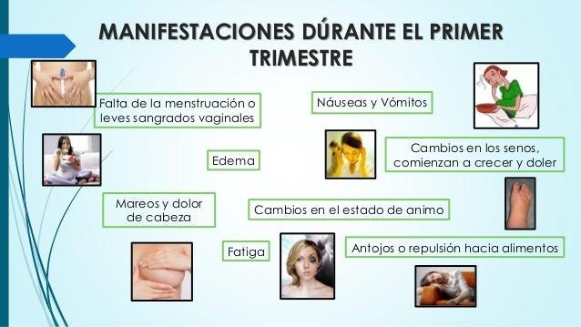 d1a3f80cc ... embarazo  10. MANIFESTACIONES DÚRANTE EL PRIMER ...