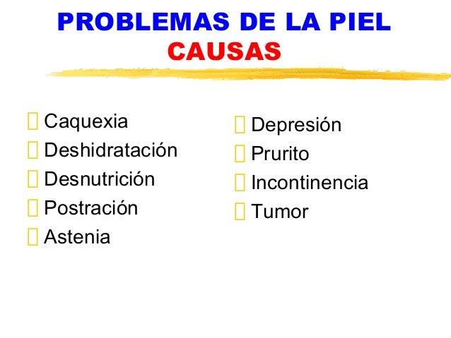 PROBLEMAS DE LA PIEL CAUSAS Caquexia Deshidratación Desnutrición Postración Astenia Depresión Prurito Incontinencia Tumor