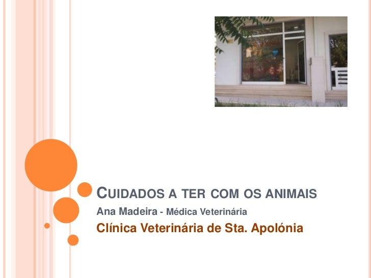 CUIDADOS A TER COM OS ANIMAISAna Madeira - Médica VeterináriaClínica Veterinária de Sta. Apolónia