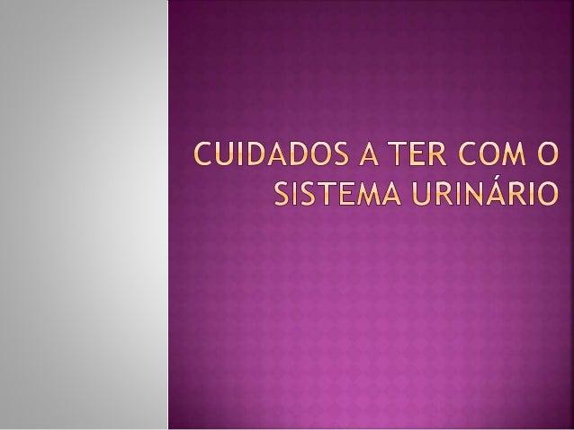  Índice  O que é o sistema urinário Cuidados a ter  Saintes donde foram tiradas as informações .