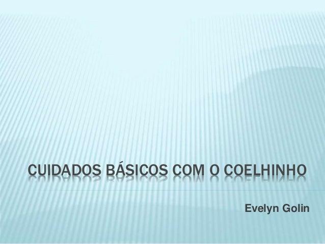 CUIDADOS BÁSICOS COM O COELHINHO Evelyn Golin