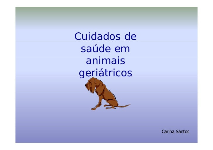 Cuidados de  saúde em   animais      i   i  geriátricos                    Carina Santos