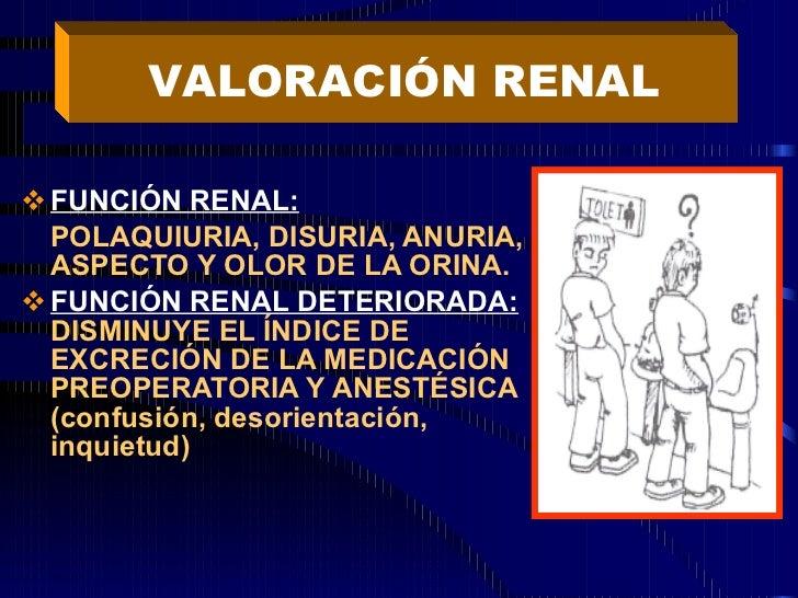 <ul><li>FUNCIÓN RENAL: </li></ul><ul><li>POLAQUIURIA, DISURIA, ANURIA, ASPECTO Y OLOR DE LA ORINA. </li></ul><ul><li>FUNCI...