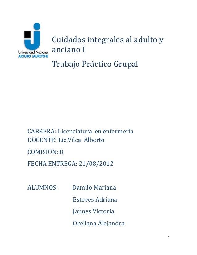 Cuidados integrales al adulto yanciano ITrabajo Práctico GrupalCARRERA: Licenciatura en enfermeríaDOCENTE: Lic.Vilca Alber...