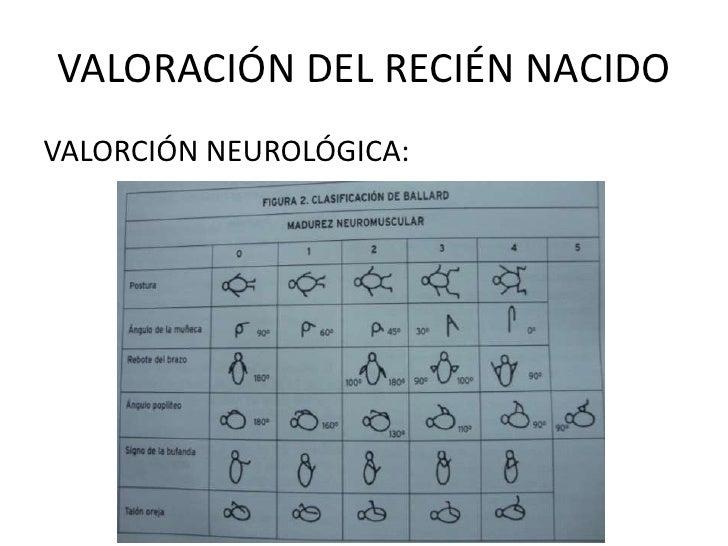 VALORACIÓN DEL RECIÉN NACIDOVALORCIÓN NEUROLÓGICA: