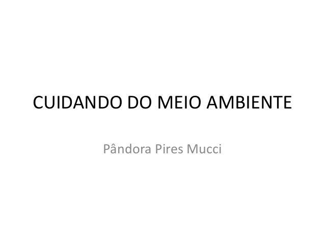 CUIDANDO DO MEIO AMBIENTE  Pândora Pires Mucci