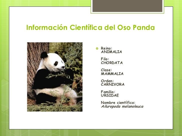 Cuidemos el oso panda 2