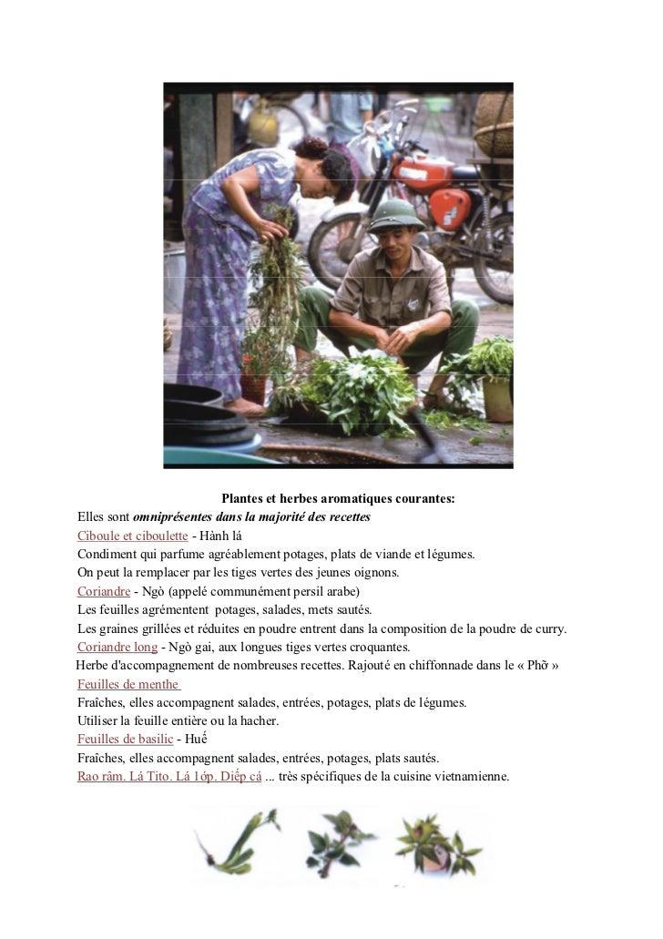 Plantes et herbes aromatiques courantes:Elles sont omniprésentes dans la majorité des recettesCiboule et ciboulette - Hành...