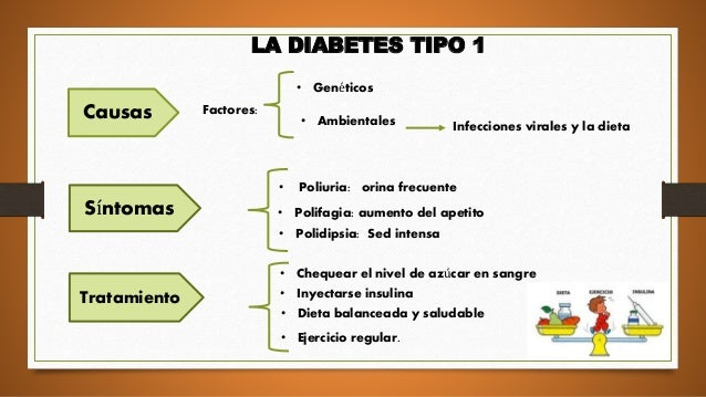 La diabetes conceptos basicos
