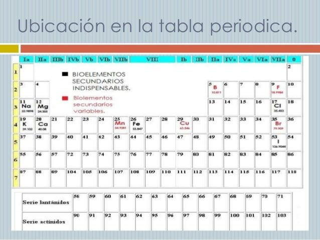 Cules elementos qumicos son importantes para el cuerpo humano ubicacin en la tabla periodica urtaz Images