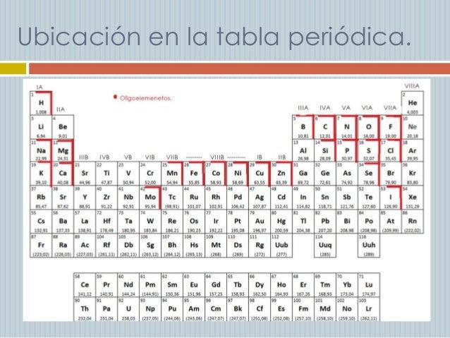 Cules elementos qumicos son importantes para el cuerpo humano ubicacin en la tabla peridica urtaz Choice Image