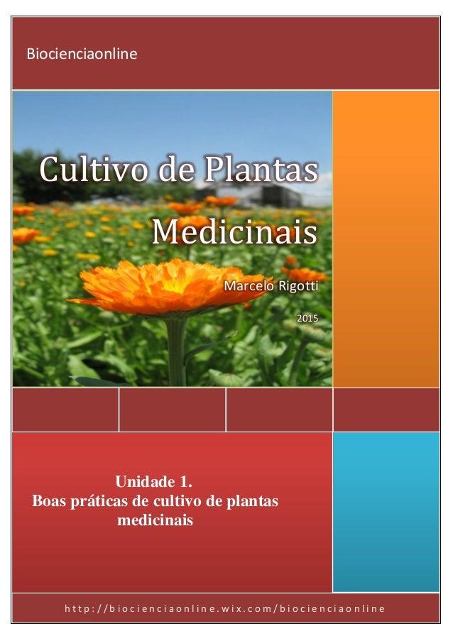 h t t p : / / b i o c i e n c i a o n l i n e . w i x . c o m / b i o c i e n c i a o n l i n e Cultivo de Plantas Medicin...