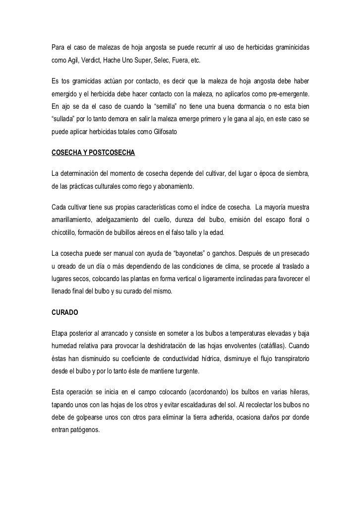 Para el caso de malezas de hoja angosta se puede recurrir al uso de herbicidas graminicidas como Agil, Verdict, Hache Uno ...