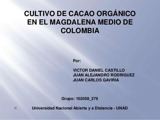 CULTIVO DE CACAO ORGÁNICO EN EL MAGDALENA MEDIO DE         COLOMBIA                     Por:                     VICTOR DA...