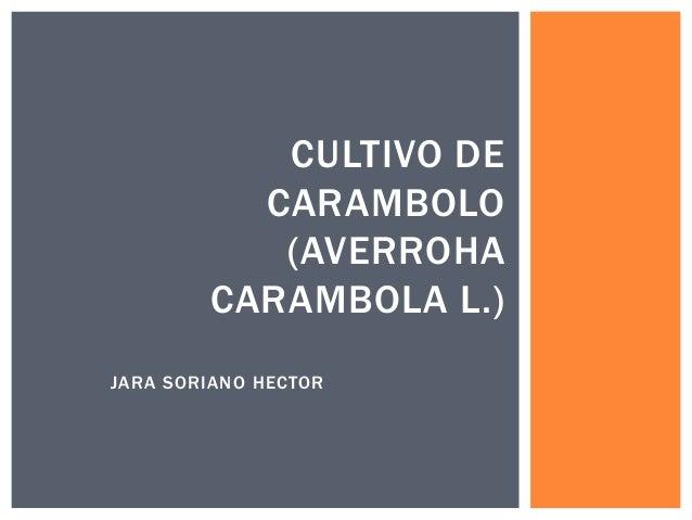 JARA SORIANO HECTOR CULTIVO DE CARAMBOLO (AVERROHA CARAMBOLA L.)