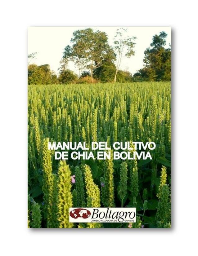 ANTECEDENTES SOBRE LA CHÍA En la época precolombina, la Chía (Salvia hispánica) era uno de los alimentos básicos de las ci...