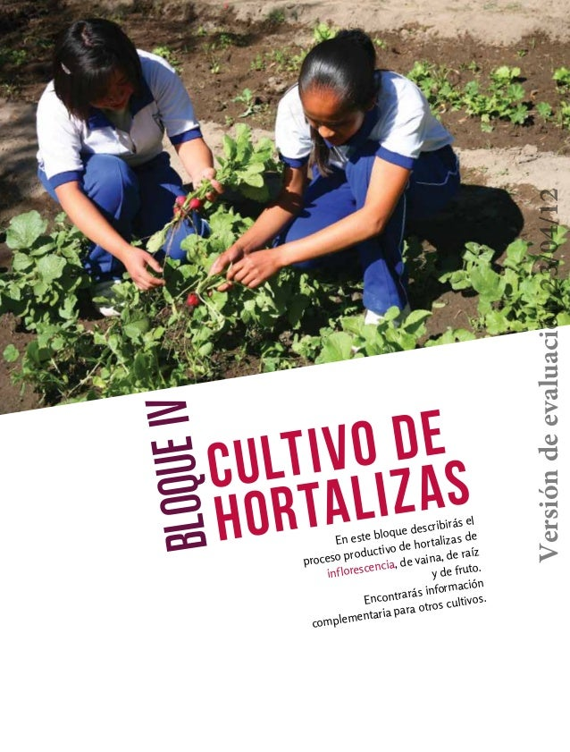 Cultivo dehortalizasBLOQUEIVEn este bloque describirás elproceso productivo de hortalizas deinflorescencia, de vaina, de r...