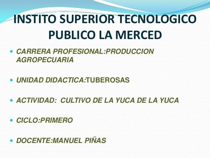 INSTITO SUPERIOR TECNOLOGICO      PUBLICO LA MERCED CARRERA PROFESIONAL:PRODUCCION AGROPECUARIA UNIDAD DIDACTICA:TUBEROS...