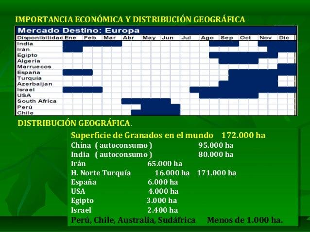 """CULTIVO DEL GRANADO """"MANEJO AGRONOMICO Y FITOSANITARIO"""" 2020 Slide 3"""