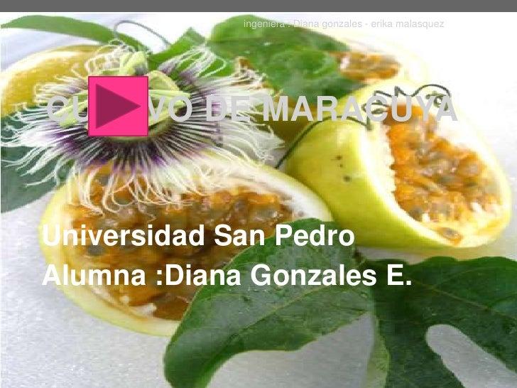 ingeniera : Diana gonzales - erika malasquezCULTIVO DE MARACUYAUniversidad San PedroAlumna :Diana Gonzales E.