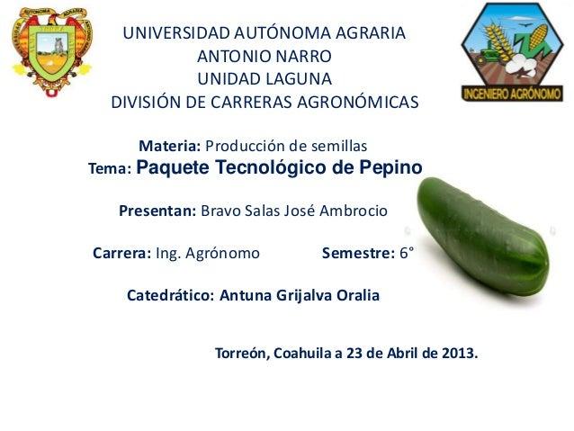 UNIVERSIDAD AUTÓNOMA AGRARIA ANTONIO NARRO UNIDAD LAGUNA DIVISIÓN DE CARRERAS AGRONÓMICAS Materia: Producción de semillas ...