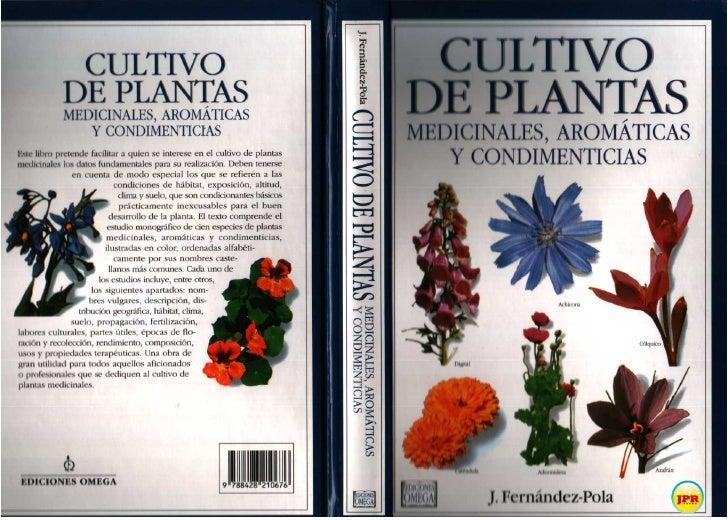 Cultivo de plantas arom ticas medicinales y condimenticias for Cultivo de plantas aromaticas y especias