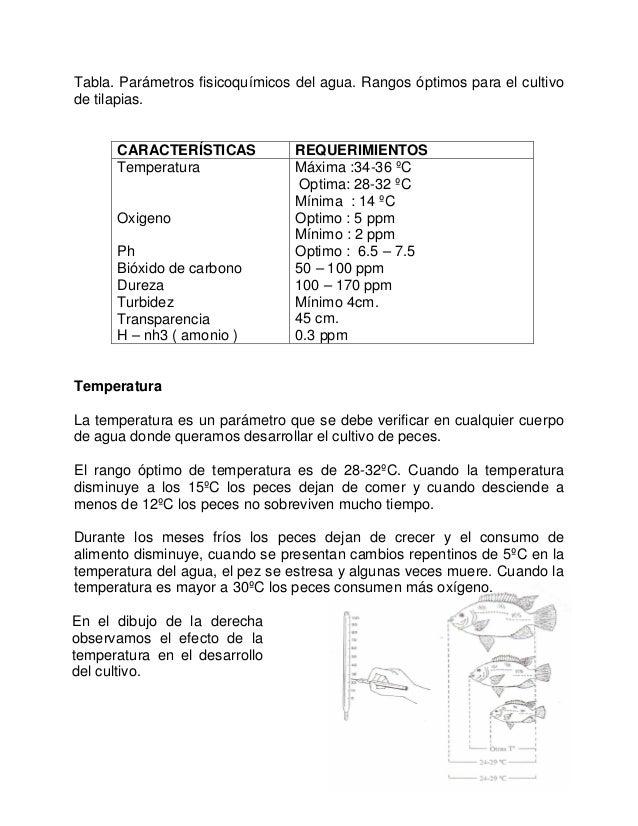 Cultivodetilapiaenestanquescirculares for Tabla de alimentacion para tilapia roja