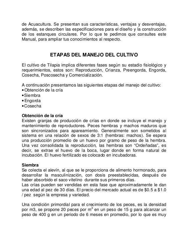 Cultivodetilapiaenestanquescirculares for Construccion de estanques circulares cria y engorda de mojarra tilapia