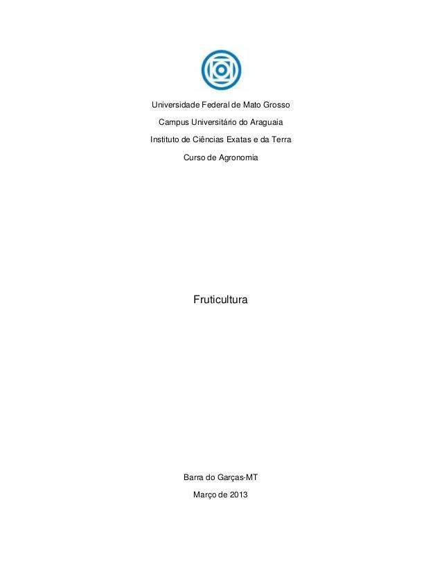 Universidade Federal de Mato Grosso  Campus Universitário do AraguaiaInstituto de Ciências Exatas e da Terra         Curso...