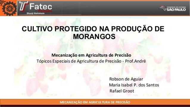 MECANIZAÇÃO EM AGRICULTURA DE PRECISÃO CULTIVO PROTEGIDO NA PRODUÇÃO DE MORANGOS Mecanização em Agricultura de Precisão Tó...