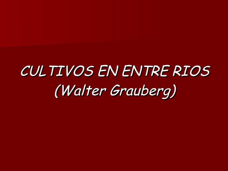 CULTIVOS EN ENTRE RIOS (Walter Grauberg)