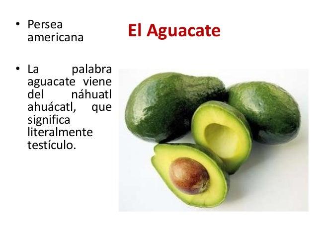Cultivos tradicionales en la rep blica dominicana for De que lengua proviene la palabra jardin