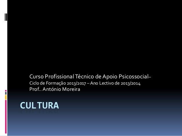 Curso Profissional Técnico de Apoio Psicossocial– Ciclo de Formação 2013/2017 – Ano Lectivo de 2013/2014  Prof.. António M...
