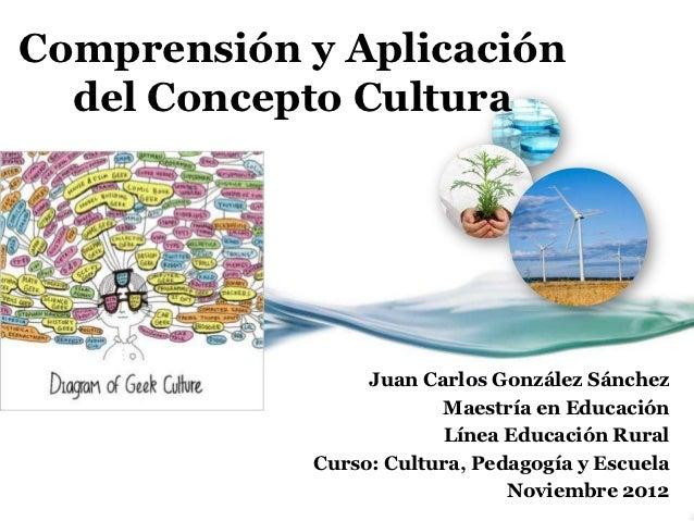 Comprensión y Aplicación  del Concepto Cultura                 Juan Carlos González Sánchez                        Maestrí...