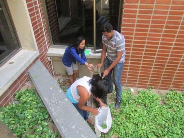CAMPAÑA DE SENSIBILIZACIÓN AL ESTUDIANTADO