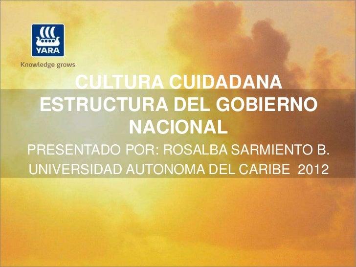 CULTURA CUIDADANA ESTRUCTURA DEL GOBIERNO        NACIONALPRESENTADO POR: ROSALBA SARMIENTO B.UNIVERSIDAD AUTONOMA DEL CARI...
